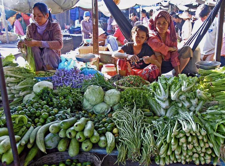 Ангкор и Северо-запад Камбоджи - самостоятельное путешествие