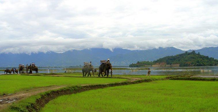 Центральное нагорье Вьетнама