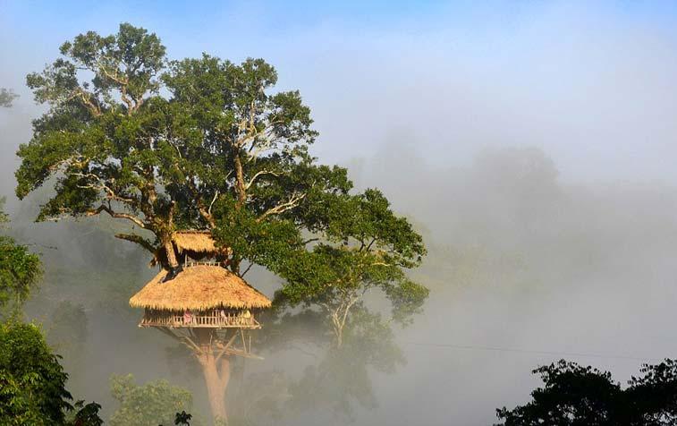 Борнео, Лаос