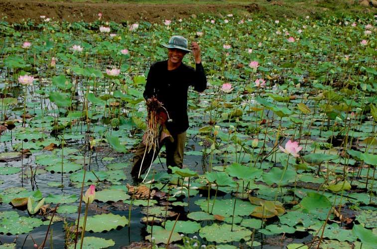 Центр Камбоджи