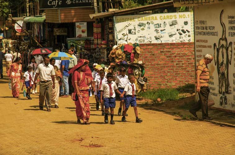 Канди и высокогорье Шри Ланки