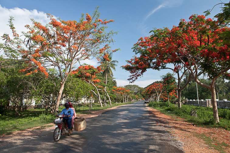 Юго - Восточной Азии
