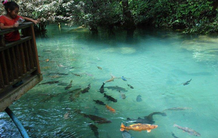 Пещеры Чианг Дао - самостоятельно