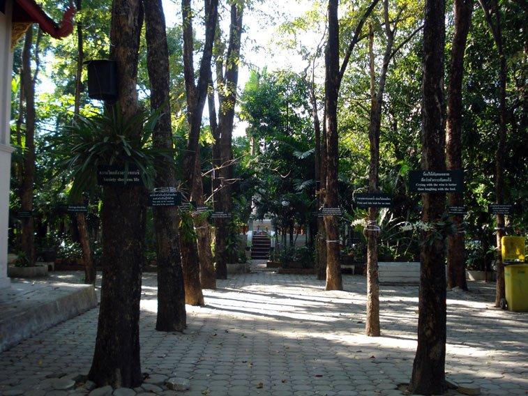 Ват Пра Синг - самостоятельное путешествие