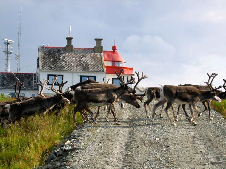 Проживание на маяке в Норвегии