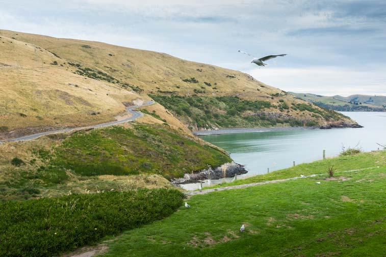 Отаго, Новая Зеландия