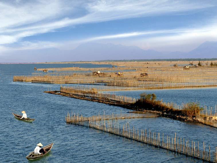 Островок Ru Cha
