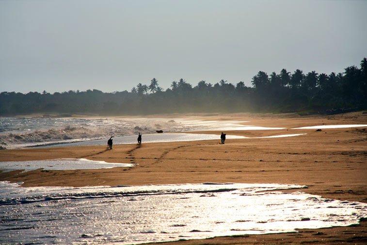 Тангалла (Тангалле) - самостоятельное путешествие