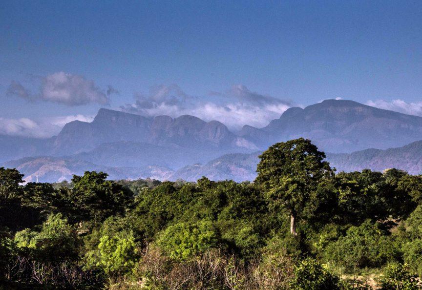 Национальный парк Васгамува