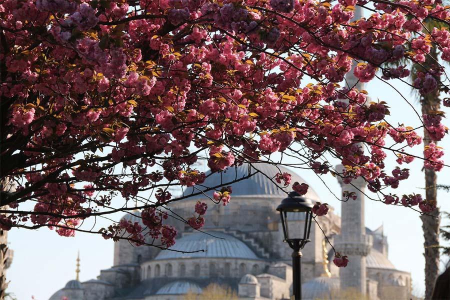 Стамбул весной